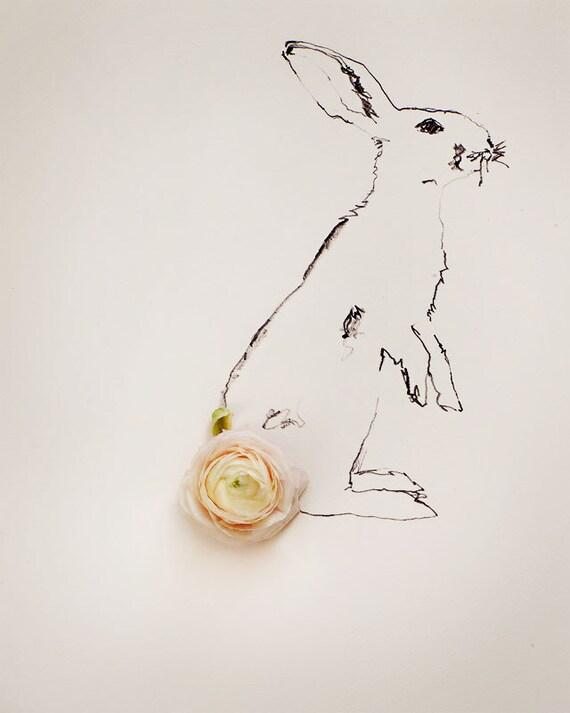 rabbit_no_2