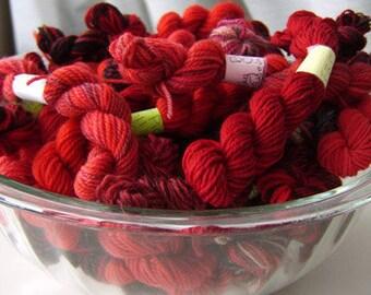 True Blood Reds -  Mini Skeins Fingering Sock Yarn Kit - Mini Mania  (12)