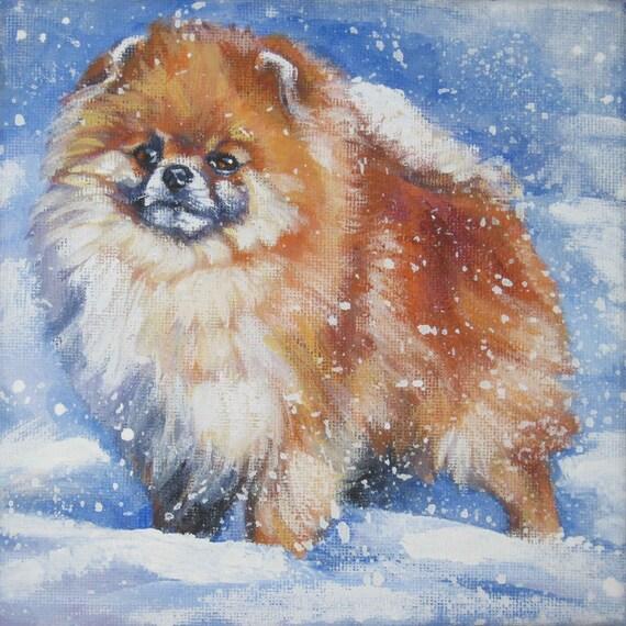 Pomeranian dog art CANVAS print of LA Shepard painting 12x12 portrait