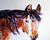 Original WaterColor Horse Art - My Shaggy Winter Pony WaterColour -11x14 painting - ready to ship