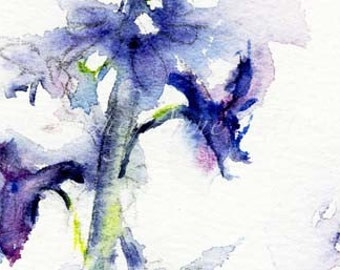 Larkspur wildflower July Birth flower Purple Larkspur Print watercolor fine art giclee Royal Purple art print