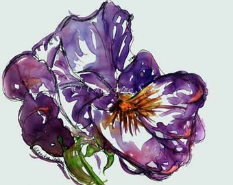 purple pansy watercolor giclee print 8x10