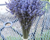 Dried Lavender (English) bundle / bunch (10-12 inch tall)