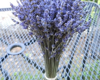 Dried Lavender (English) bundle / bunch - 8-10 inches