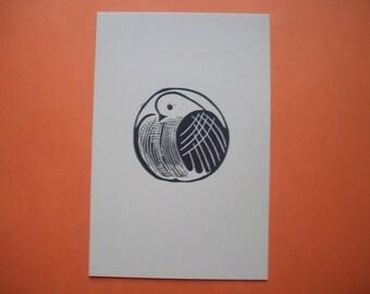 Print--Fluffed Dove
