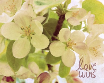 Love Wins // Nature Photo, Romantic, Valentines, Pink, Cream, Shabby Chic, Retro Inspired, Floral, Flowers, Purple, Apple Blossoms