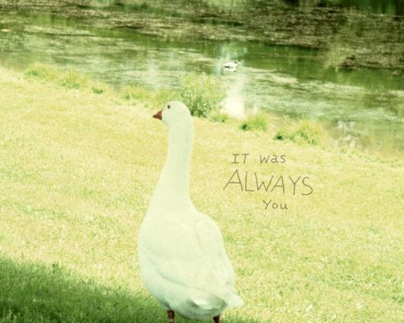 Always You // Landscape Nature Photo, Art Print Poster, Romantic Cottage, Love Nest, Retro Cabin, Shabby Chic Decor, Goose, Bird, Photo