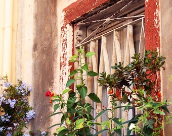Rustic Home Decor - Window Garden Print Corfu Greece Photography Greek Art Rust Red Purple Flowers Mediterranean Decor Travel Photo