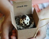 Crack Me! Save the Date Custom Quail Eggs with Notes - Unique Save the Dates - Wedding - Bridal