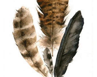"feather art, feathers painting, watercolor, art, wall, decor, earth tones, ""Found Feathers"" Large Archival Print"