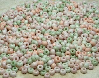 6/0 Opaque San Antonio Mix Czech Glass Seed Beads 20 Grams (CS66)