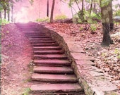 Baby Girl Nursery Decor, Nature Photography, Dreamy Fairytale Pink Stairs, Baby Girl Child Room Art, Baby Girl Nursery Wall Art Nature Photo