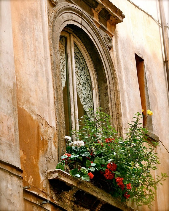 Rome Italy Photography Roman Window Garden Print Italian
