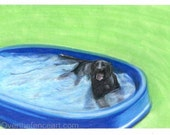 Dog art, Animal art Black LABRADOR card,animal lover gift, gift for dog lovers, Labrador cools off in pool