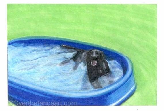 Dog art, Animal art Black LABRADOR card,animal lover gift, gift for dog lovers, Labrador cools off in pool