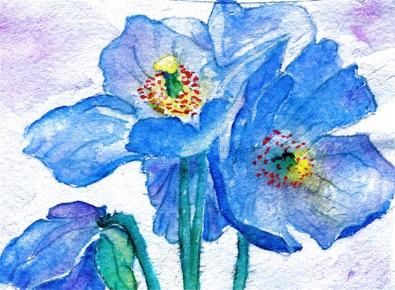 DIGITAL DOWNLOAD Flower Painting Watercolor Print Himalayan Blue Poppies blue white mauve yellow red