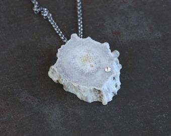 Venus Rising - Deer Antler Slice and Rhinestone Pendant Necklace by Prairieoats