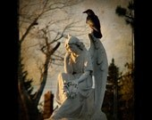 On a wing - Corvid - Gothic angel - professional image