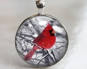 Bird Pendant - Snowy Cardinal - Glass Pendant, Necklace or Key Chain in Silver Bezel Setting - 30mm