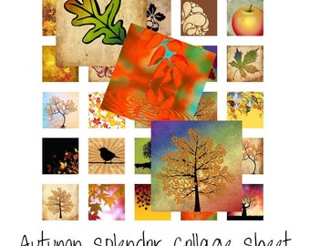 Autumn Splendor - Instant Download - Digital Collage Sheet - 1 Inch Squares - Fall Images