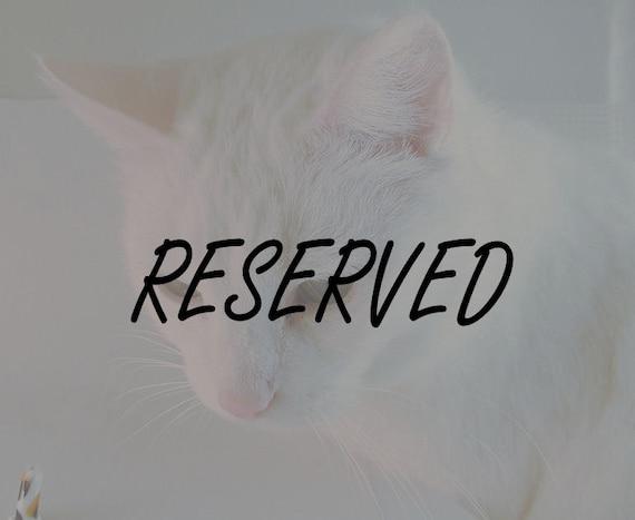 RESERVED FOR TRIOLET -  Machiko FatCat