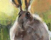 Art Print Wildlife Rabbit Outdoors Rustic Painting - Jackrabbit by David Lloyd