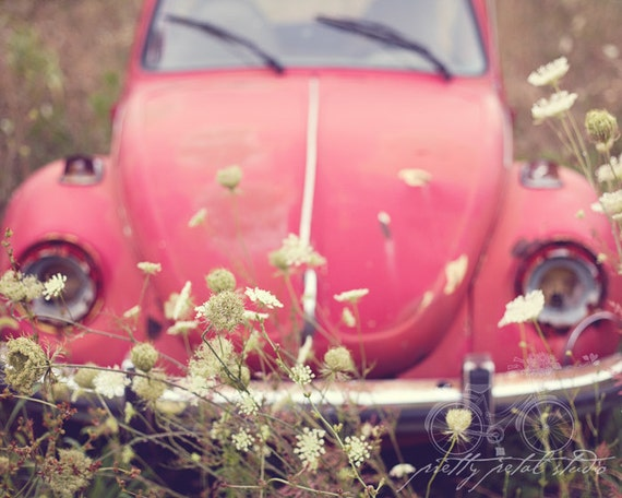 Fine Art Photograph, Retro Red VW Beetle, Love Bug, Queens Anne Lace, Volkswagen Photo, Wildflowers, Boho, Whimsical Art, Hippie, Print