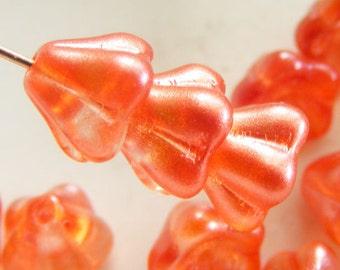 Czech Bell Flower Beads 8x6mm Coated Orange Sherbet (15pk) SI-8x6F-OS