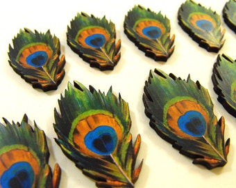 Wooden Peacock Feathers - Collection of 12 Wood Cuts