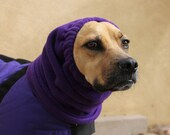 SMALL DOG SNOOD, Polar Fleece snood size Small - purple Snood for Puggle, Boston Terrier, Whippet or similar size dog