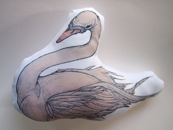 Rose - A Young Swan IV