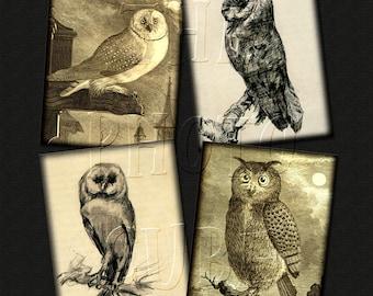 "OwLS -PriMiTivE Vintage Art Images-4""x5"" Printable Collage Sheet JPG Digital File -card making, scrapbooking, crafts- NeW LoWER PRiCE"