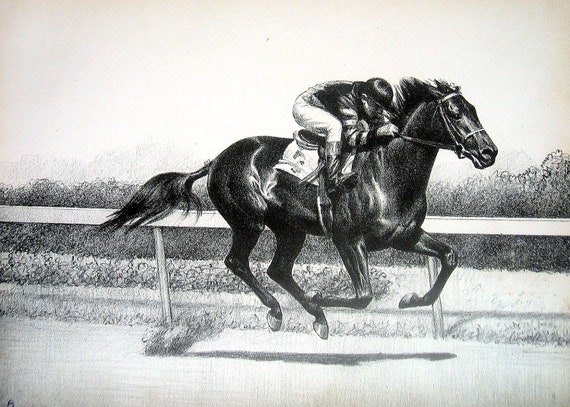 Horse Illustration War Admiral Thoroughbred Racehorse 1939 Vintage Book Page