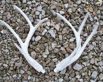 Faux Taxidermy,Antlers,Set,Deer,Buck,Stag,Pair,Replica,Sheds