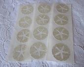 Handmade Sticker Seal - Sand Dollar - Beach  Wedding Envelope Seals