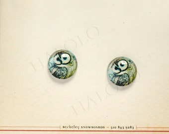 Sale - 10pcs handmade owl round clear glass dome cabochons 12mm (12-0622)