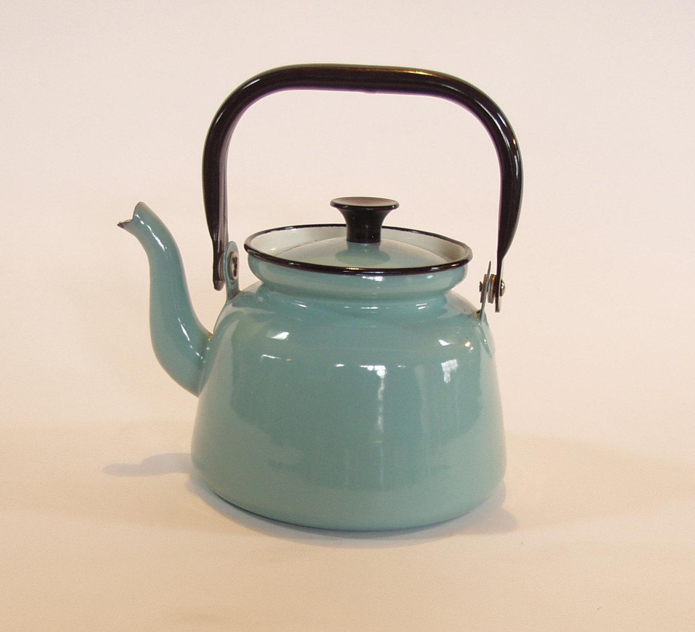 Vintage Robin S Egg Blue Enamel Teapot Kettle From