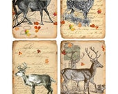 Instant Download - Deer & Elk Tags - Set of 4 Different Images - 3x5 - Collage Sheet - Printable Download - Gift Tags - Scrapbook