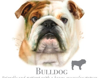 Bulldog Fabric Etsy
