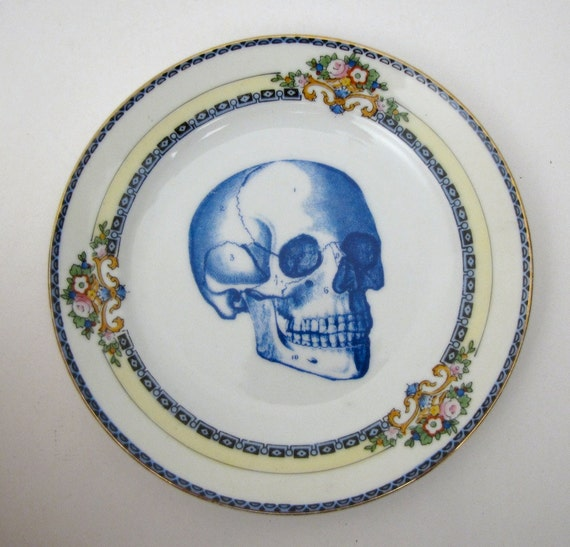 Anatomical Blue Skull Plate Chase and Scout Vintage Retro Halloween Altered Vintage