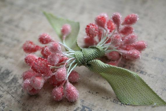 pink berry sugar stamens