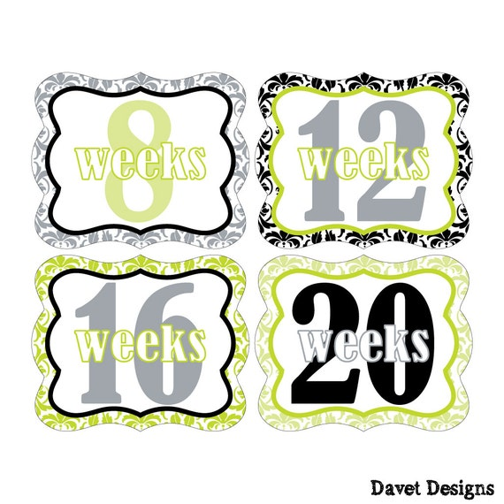 12 Weekly Pregnancy Mama-to-be Maternity Waterproof Glossy Die-cut Stickers  - Monthly stickers available - Design W010-01