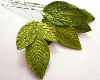 Vintage  Green Velvet Rose Leaves Medium  (6)