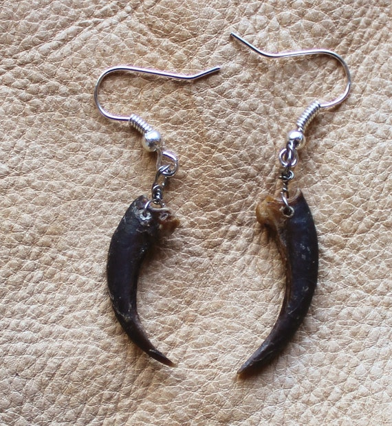 Real American porcupine claw earrings on fish hook ear wires