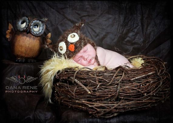 Baby Hat, Owl Hat, Knit Newborn Hat, Baby Knit Hat, Baby Photo Prop, Little Owl Hat