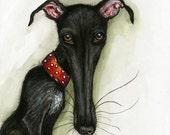 Dog Art -  Greyhound Art PRINT