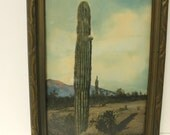 Antique J. R. Willis Photo Cactus Gallup NM New Mexico Original Frame J R JR