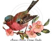 Beautiful Vintage Shabby Style Chic Liitle Birdie Waterslide Decals Miniature bd-40