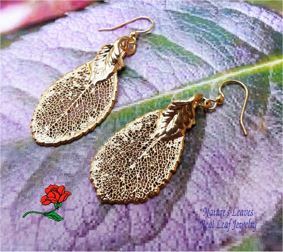 Real Leaf Earrings, Rose Leaves, Small. 24 Gold Dipped, Anti allergy wires