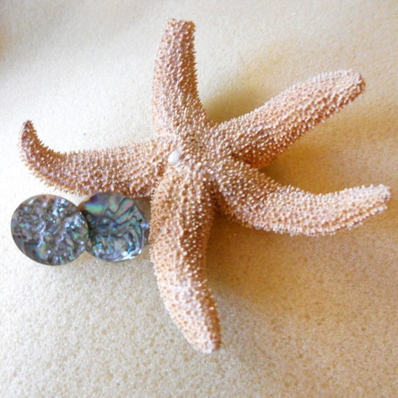 Paua Shell Abalone Button Earrings